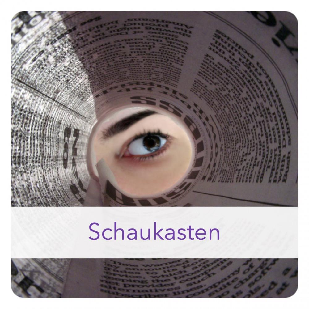 Icon Schaukasten